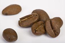 Free Coffee Grains Stock Photo - 9458680