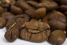 Free Coffee Grains Stock Photo - 9458700