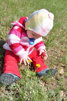 Free The Child With Dandelions Royalty Free Stock Photography - 9458827