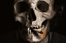 Free Bone, Skull, Skeleton, Jaw Royalty Free Stock Image - 94594836