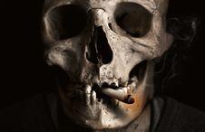 Free Bone, Skull, Skeleton, Jaw Royalty Free Stock Image - 94594836