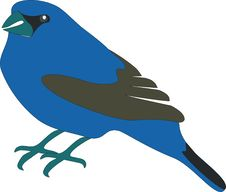 Free Bird 01 Royalty Free Stock Photography - 9460257