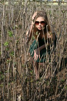 Free Girl Sitting Among Bushes Stock Photography - 9461882