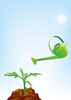 Free Irrigate Royalty Free Stock Image - 9461896