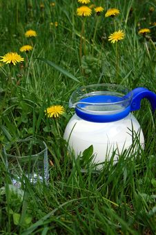 Free Milk Jug Royalty Free Stock Photos - 9464258