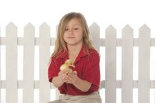 Free Little Girl With Baby Ducks Stock Photography - 9464442