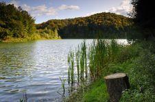 Free Lake Surround With Woods Royalty Free Stock Photo - 9464575