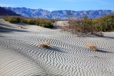 Free Sand Ripples Stock Image - 9465561