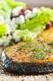 Free Cooked Salmon Stock Images - 9473734