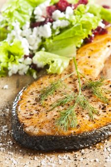 Free Cooked Salmon Royalty Free Stock Images - 9473739