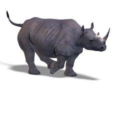 Free Rhinoceros Rendering Stock Image - 9476071
