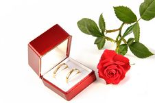 Free Wedding Rings And Rose. Stock Photo - 9478280