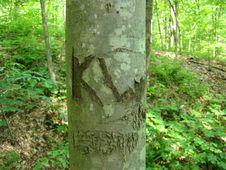 Free Oldtown Creek Preserve Stock Images - 94777894
