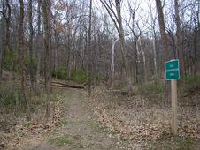 Free Oldtown Creek Preserve Royalty Free Stock Image - 94777906