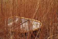 Free Boat Among Reeds Royalty Free Stock Images - 9480159