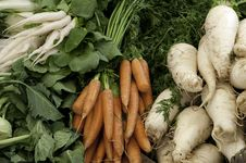 Free Carrots And Radishes Royalty Free Stock Image - 9484066