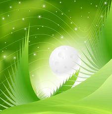 Free Green Spring Night Stock Images - 9484704