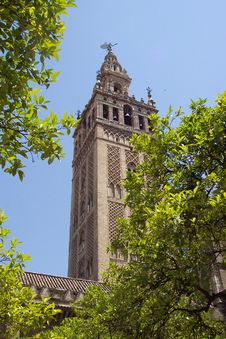 Free Seville Cathedral Stock Photography - 9484822
