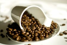 Free Coffe Cup Royalty Free Stock Photo - 9487935