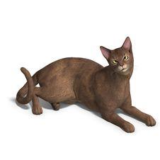Free Cat Royalty Free Stock Photos - 9491438