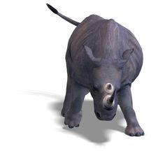 Free Rhinoceros Rendering Stock Photo - 9491480