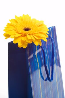 Free Paper Bag For Gifts Royalty Free Stock Photos - 9492538