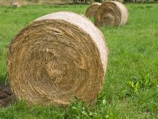 Free Harvested Rolls Of Straw On Farmland Stock Images - 9493284