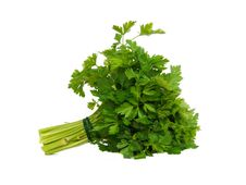 Free Fresh Curly Parsley Royalty Free Stock Photos - 9494308
