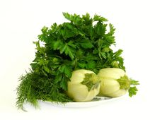 Free Fresh Parsley And Marrows On The Plate Stock Photos - 9494573