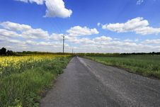 Free Country Road Royalty Free Stock Photo - 9494645