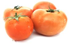 Free Tomatoes Royalty Free Stock Images - 9494989