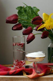 Free Rhubarbs Drink Stock Photography - 9497452