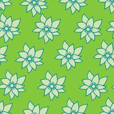 Free Summer Flowers Royalty Free Stock Photography - 9497567