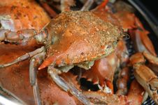 Seasoned Steamed Crabs In Pot Stock Images