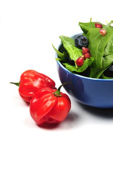 Free Salad And Ingredients Stock Photo - 9498130