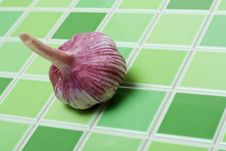 Free Head Of The Garlic Stock Photography - 9499792