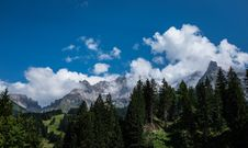 Free Green Leaf Trees And White Clouds Under Blue Sky During Daytime Royalty Free Stock Photography - 94945667