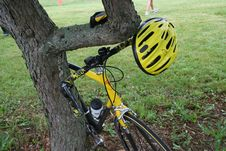 Free Biking Equipment On Tree Stock Photography - 950022