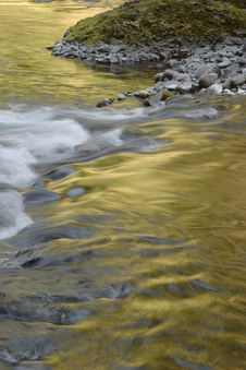 Free Golden Wahclella Creek Royalty Free Stock Images - 950059