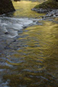 Golden Wahclella Creek Royalty Free Stock Photography