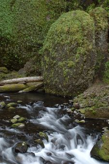 Free Wahclella Creek Stock Photos - 950093
