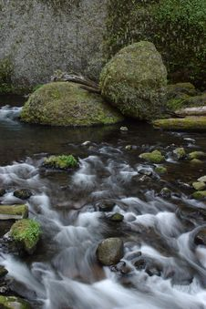 Free Wahclella Creek Stock Photo - 950100