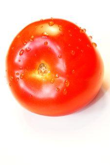 Free Tomato Stock Image - 952061