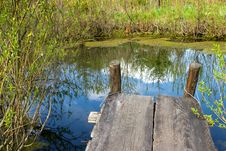 Cosy Nook At A Spring Pond Stock Photos