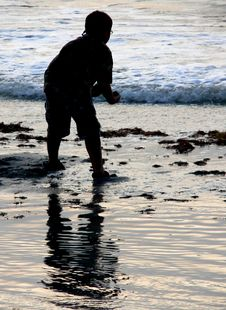 Free Playing At The Shore Stock Photography - 953022