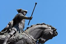 Free Commander Royalty Free Stock Photo - 954415