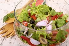Free Garden Salad Royalty Free Stock Photo - 954575