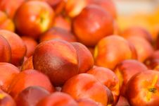 Free Red Plums Stock Image - 956871