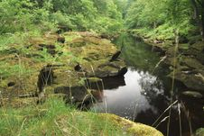 Free Idylic River Scene Stock Images - 957084
