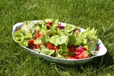 Free Fresh Salad Royalty Free Stock Images - 959469